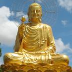 Zen Patriarch