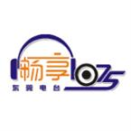 Dongguan Traffic & Music Radio